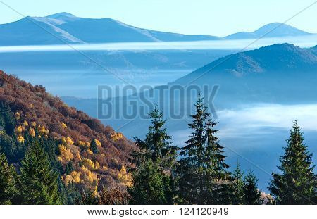 Colorful forest on autumn slope and clouds between the peaks.