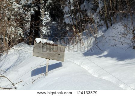 Wooden Christmas Sign With Snow In Snowy Scenery. Copy Space Your Text Here Or Free Space For Seasons Greetings Or Christmas Greetings Or Advertisement. Christmas Atmosphere.