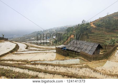 Sapa, Vietnam - February 16, 2016: Isolated house among the rice terraces of Sapa in north Vietnam.