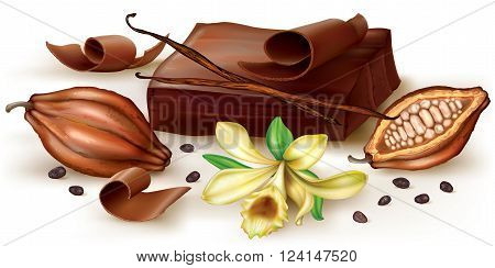 Chocolate block and curl with vanilla flower and cocoa fruit. Vector illustration