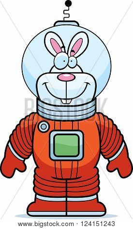 Rabbit Astronaut