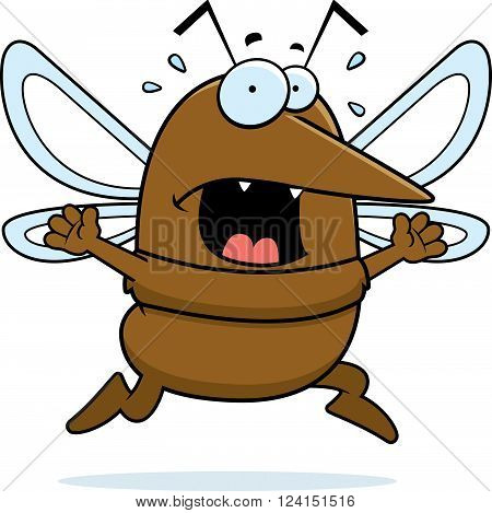Mosquito Panic