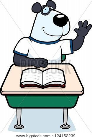 Panda Student