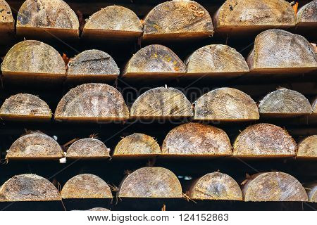 Rows of wooden logs in lumber mill for background