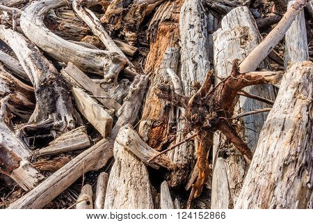 Closeup shot of piles of driftwood. Background or texture.