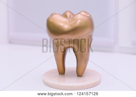 Human Gold Tooth on a white background.
