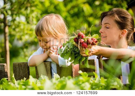 Little child praying and wistfully looking on seedbed mother holding bunch of freshly harvested radishes