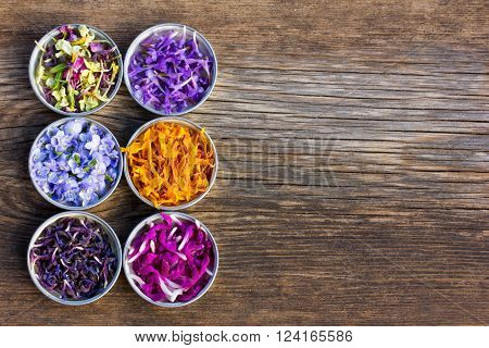 a set of fresh and colorful dried flower petals. aromatherapy herbal tea homeopathic medicine. Free space for text. Copy space