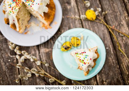 Sliced Easter cake and pussy-willows, copy space