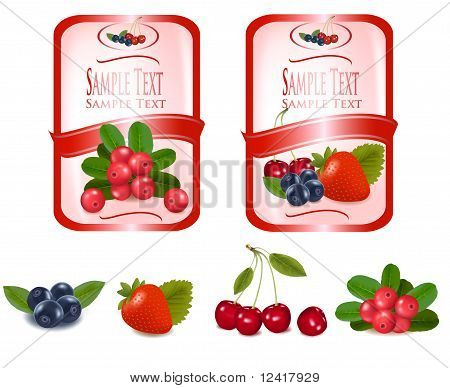 Two labels with berries. Vector.