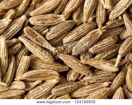 close up of cumin seed food background
