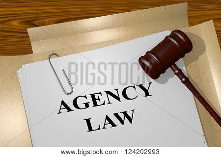 Agency Law Legal Concept