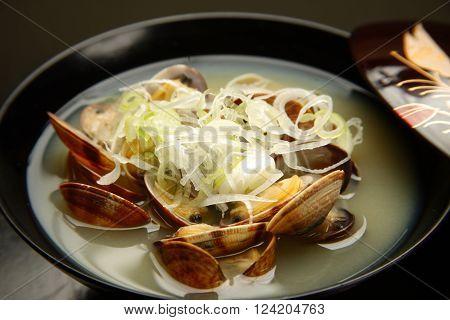 close up shot of Japanese style shellfish soup