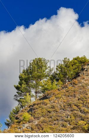 Landscape with hills and bushes in Troodos mountains, Cyprus