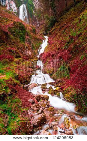 Long exposure photography stream forest mountains and vibrant colors