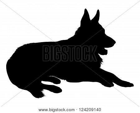 Silhouette of a German Shepherd dog, in lying pose