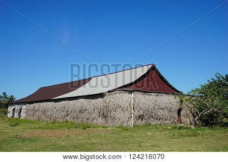 Agriculture Building. primitive Cuban Barn or drying house for cigar plants