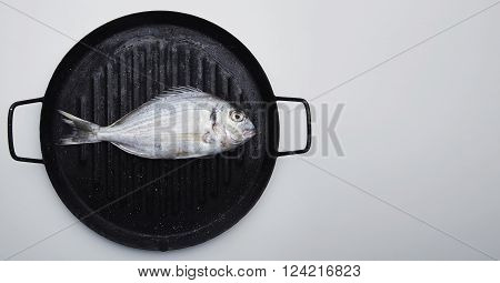 Presentation Of Fresh Wild Sea Bream On Grill Pan Ready To Cook, Isolated Side Of White Table With S