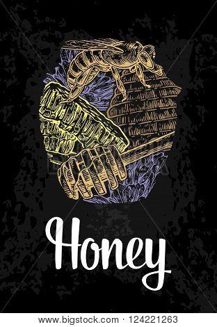 Jars of honey bee hive clover honeycomb. Color hand drawn sketch on vintage black background. Vector engraved illustration.