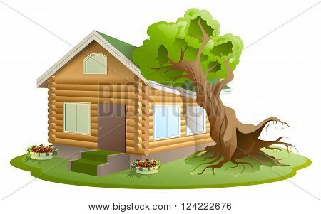 Hurricane tree fell on house. Property insurance. Illustration in vector format