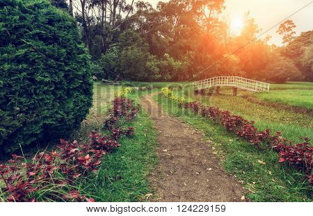 Nuwara Eliya, Sri Lanka. Queen Victoria Park lit the evening sun. Victoria Park is located in the heart of the alpine resort of Nuwara Eliya - the