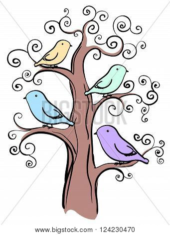 4 miscellaneous color birds on tree isolated