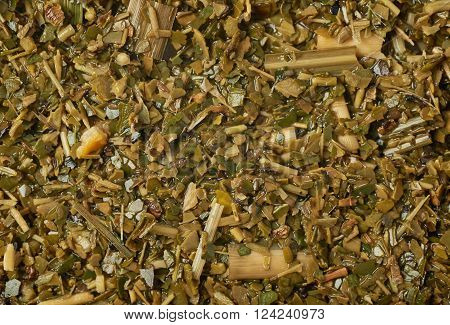 Surface covered with the wet mate tea leaves as a background texture composition