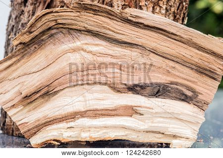 Untreated wood structure as background or texture