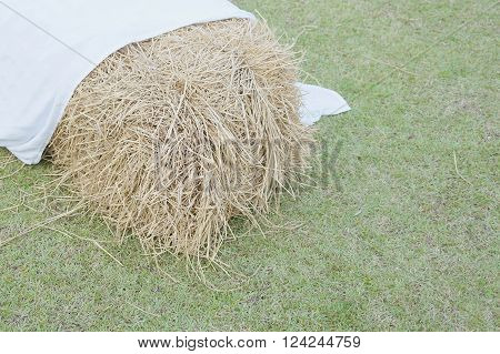 Cluster of straw from dry bamboo leaves with white fabric on green lawn.