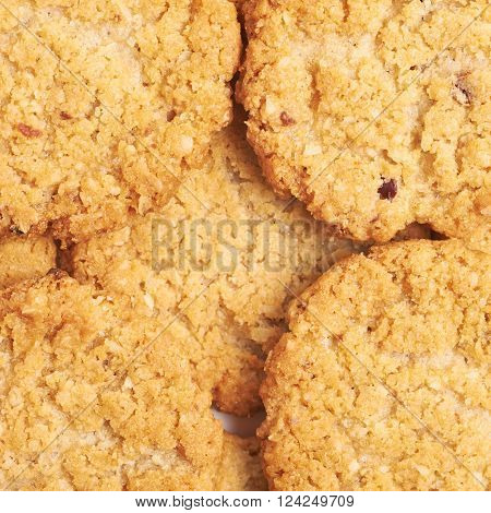 Surface covered with thin oatmeal cookies, close-up fragment as a backdrop texture composition