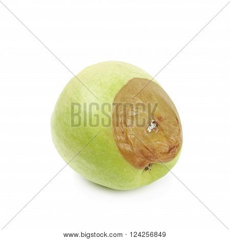 Rotten green apple fruit isolated over the white background