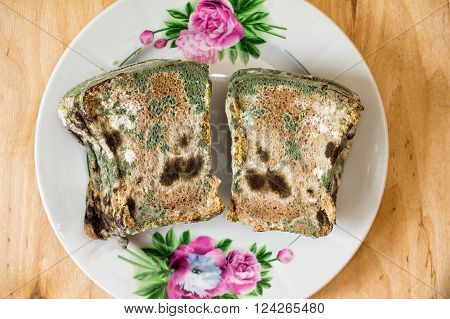 Moldy sliced bread loaf on a plate. Green black and white mold on bread.