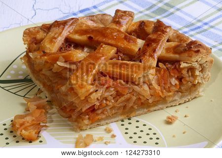 Cabbage pie section on crockery plate on white wooden background ** Note: Soft Focus at 100%, best at smaller sizes