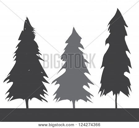 Pacific northwest old growth evergreen tree. 10 eps vector illustration