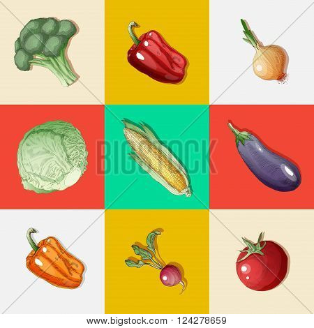 Vegetables Set. Vintage Style. Healthy Food. Broccoli Peppers Eggplant Onions Radish Sprouts Tomato Corn. Hand Drawn. Vector illustration