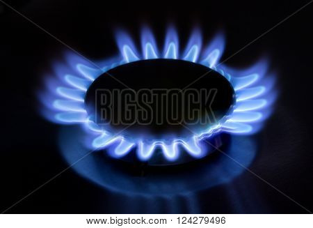 gas stove fire on the black background