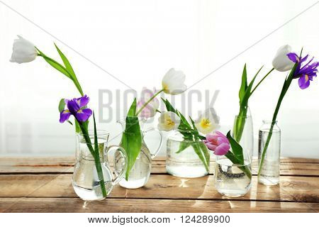 White, pink tulips and purple iris in glass vases with water on wooden table beside the window