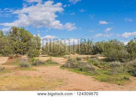 Hiking trail and walking path leads into the natural wilderness of the Mojave Desert near Santa Clarita California.