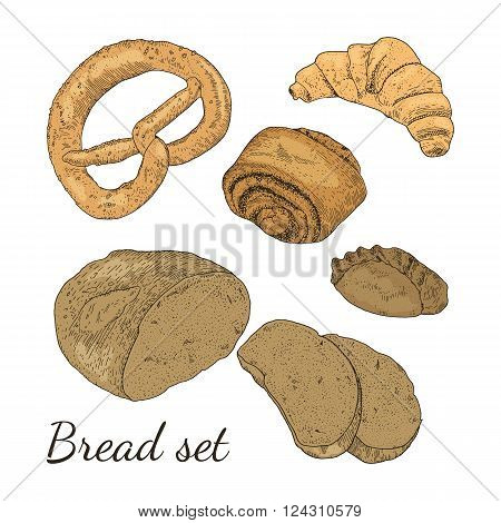 Color hand drawn vector bakery set with different type of bread. Loaf of bread, rye pie, bun with poppy seeds, croissant, pretzel. Isolated. Easy to use for different design of menu, advertisement, cafe etc.
