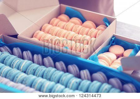 Varicolored tasty macaroons in cardboard boxes