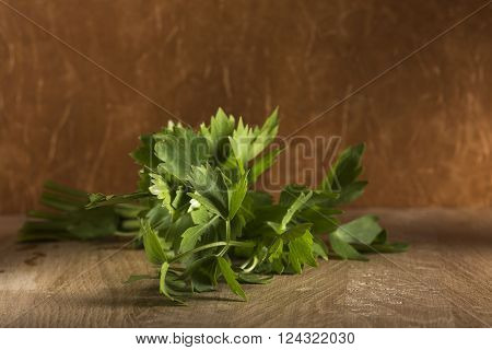 Fresh green aromatic bunch of lovage on a wood cutting board