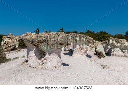 Natural Phenomenon Stone Mushrooms, Bulgaria
