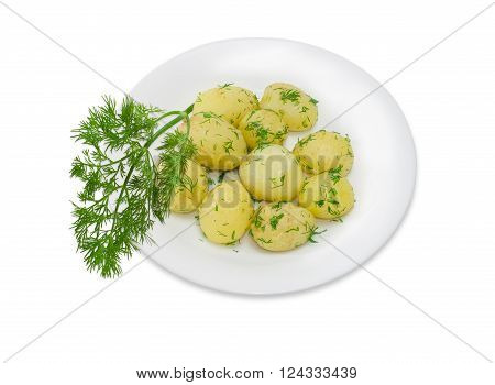 Boiled whole young potatoes of early ripening with butter sprinkle with chopped dill on a white dish and a sprig of dill separately on a light background