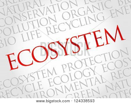 Ecosystem word cloud environmental concept, presentation background