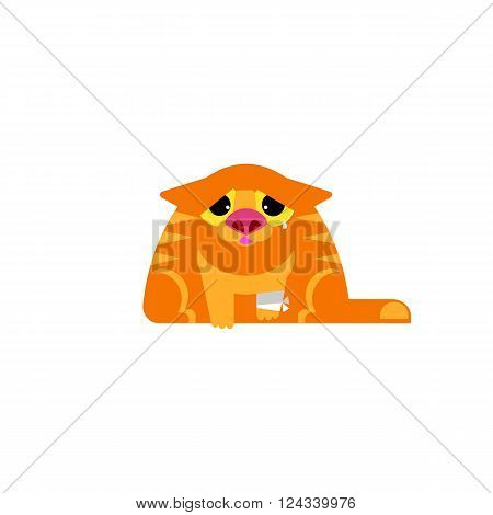 Sick cat flat vector illustration. Veterinary clinic service icon. Pet medicine concept. Orange cat with paw bandage. Crying cat. Ill cat design.