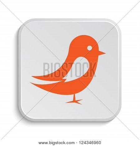 Bird Icon