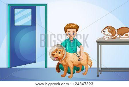 Vet healing dog at the hospital illustration