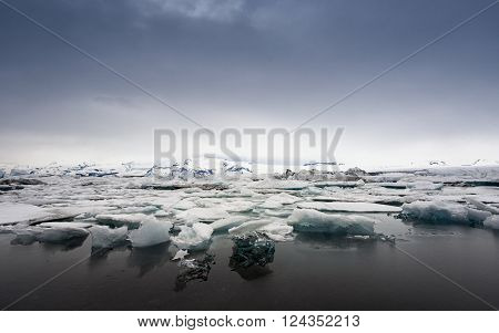 Icebergs on the shore of Jokulsarlon glacier lagoon ** Note: Soft Focus at 100%, best at smaller sizes