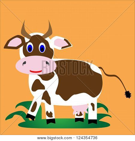 White with brown spots funny cheerful cow on grass on an orange background.