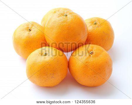 Closed up Orange, Mandarin Orange, Citrus sinensis